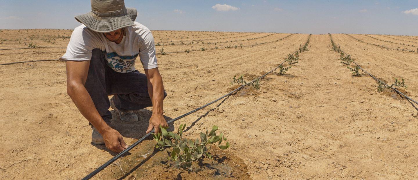 PRECISION IRRIGATION: POWER TO THE FARMER