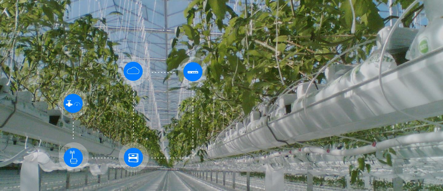 OPTIMISING PROTECTED CROPS' GROWTH WITH NETBEAT™